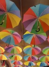 renklerin-ustasi-827